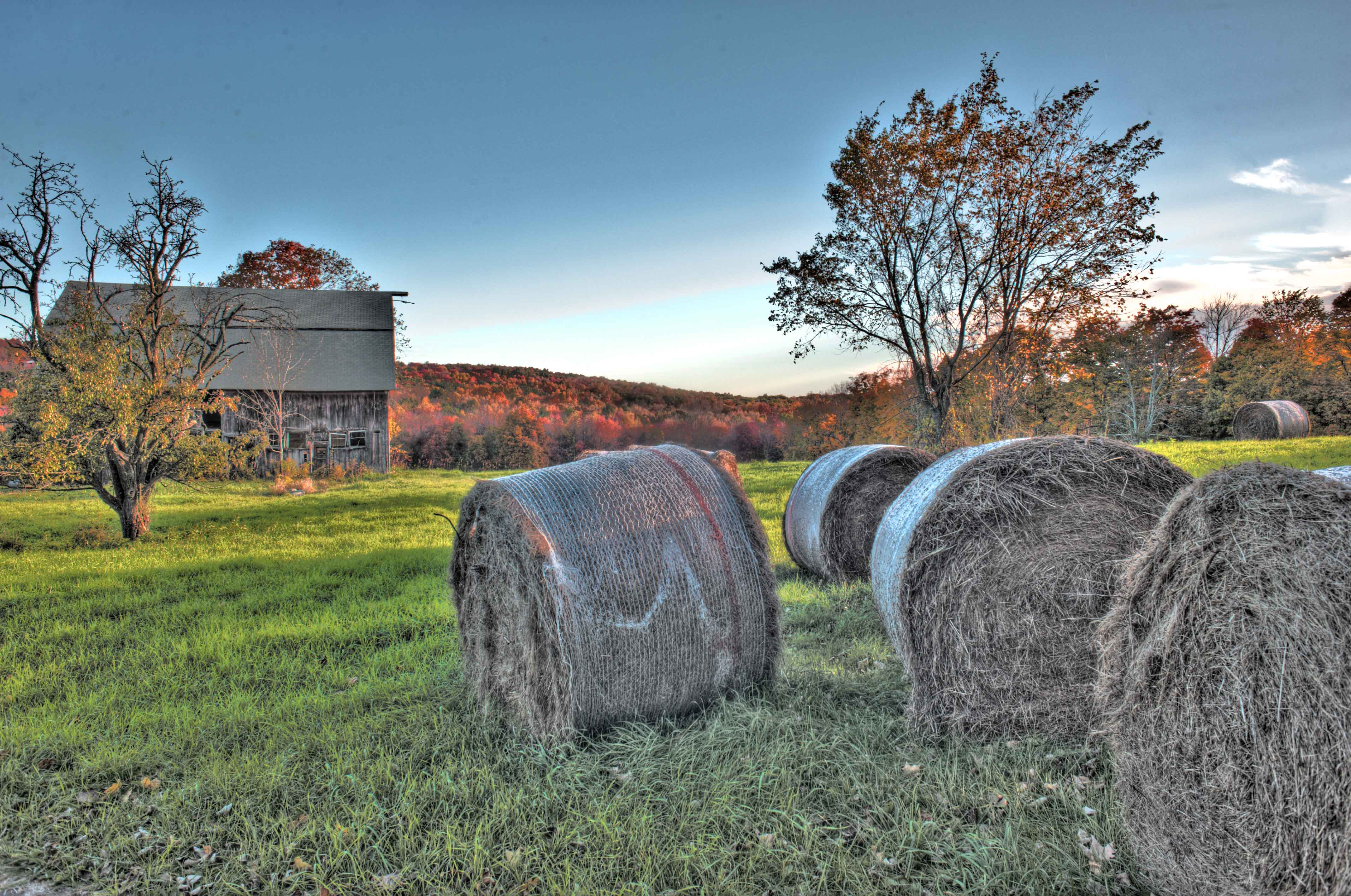 ROLLS OF HAY IN GRANBY